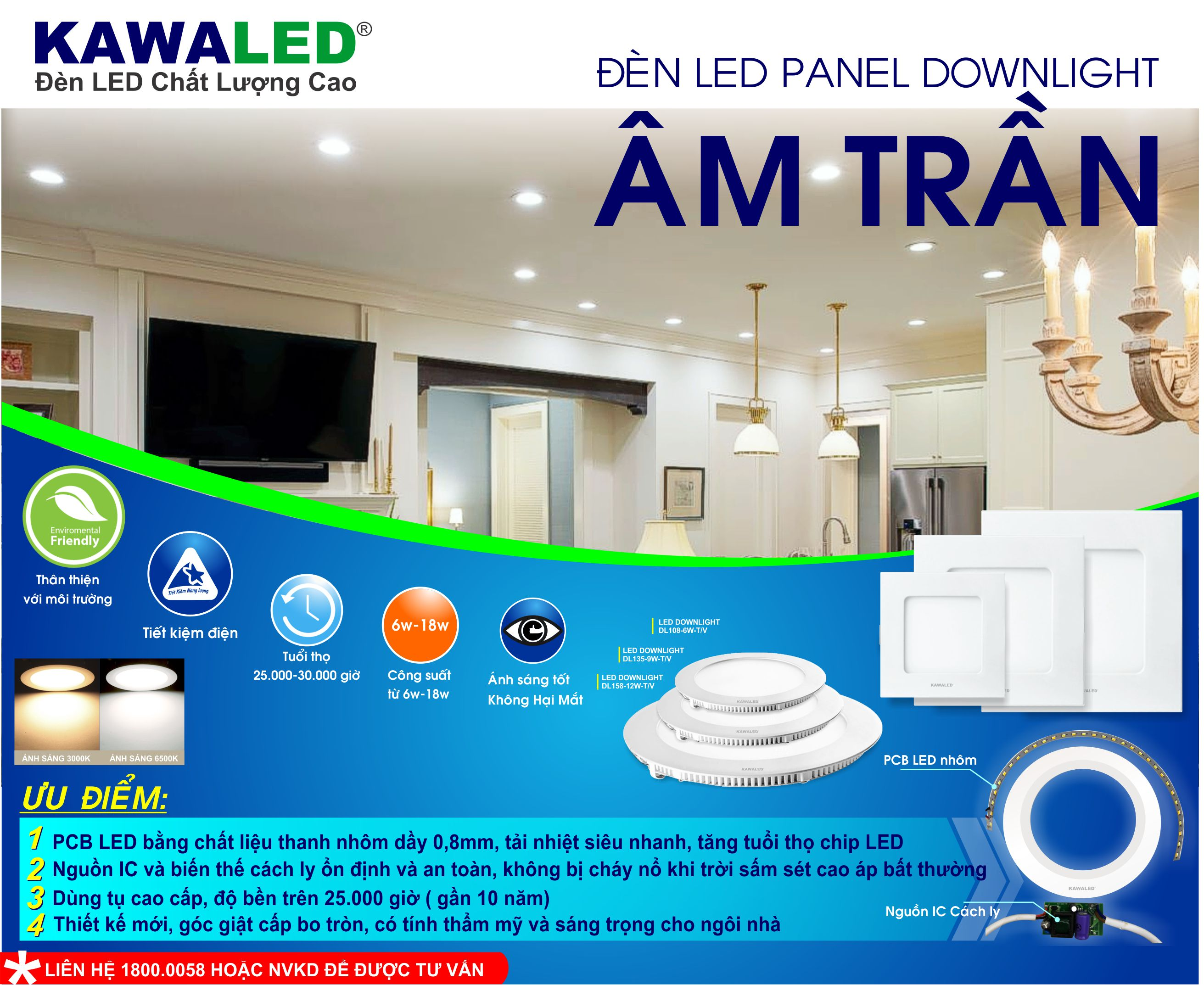 DOWNLIGHT AM TRAN.jpg